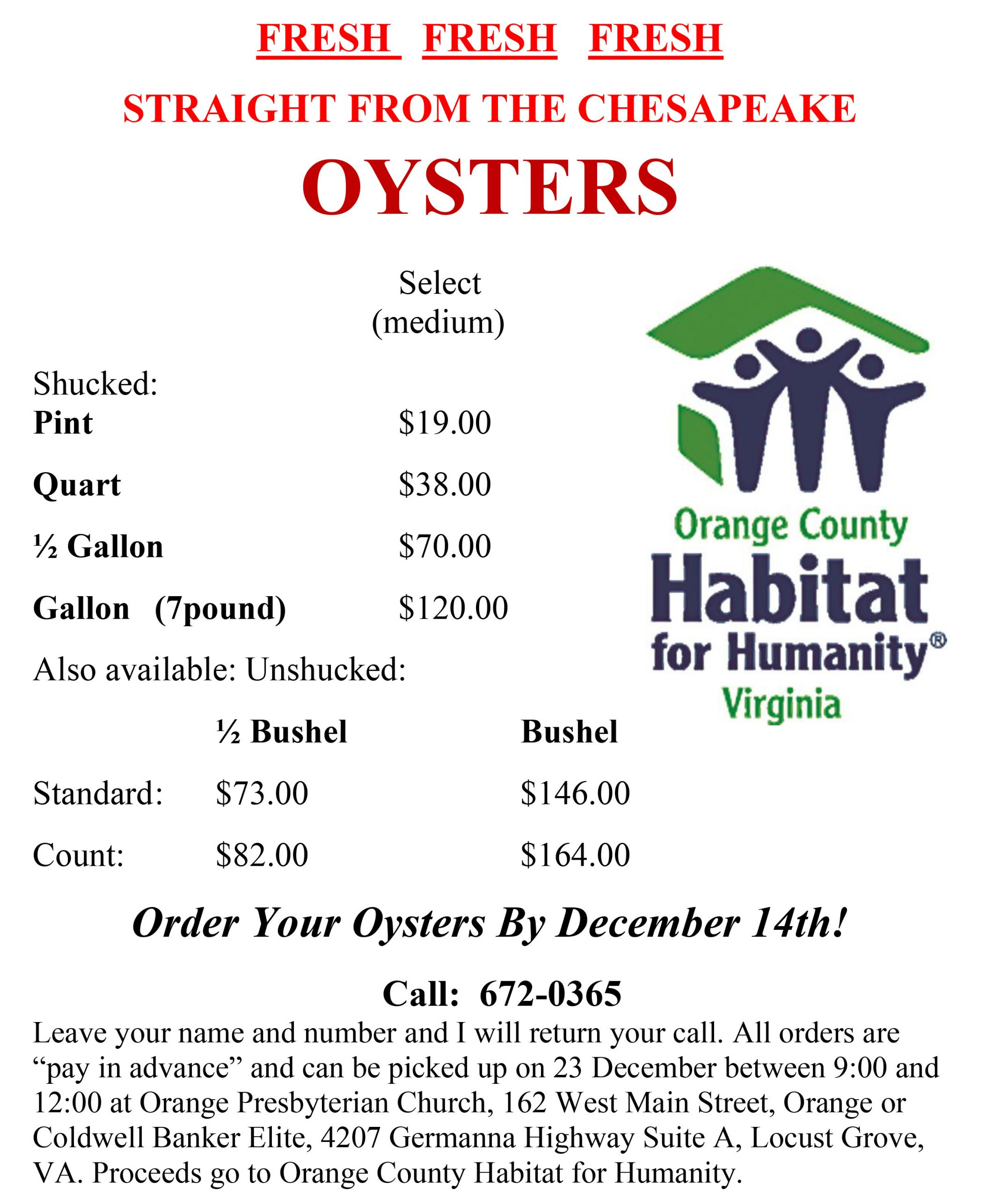 oysters-flyer-2019